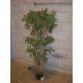 Imitation Bamboo Plant